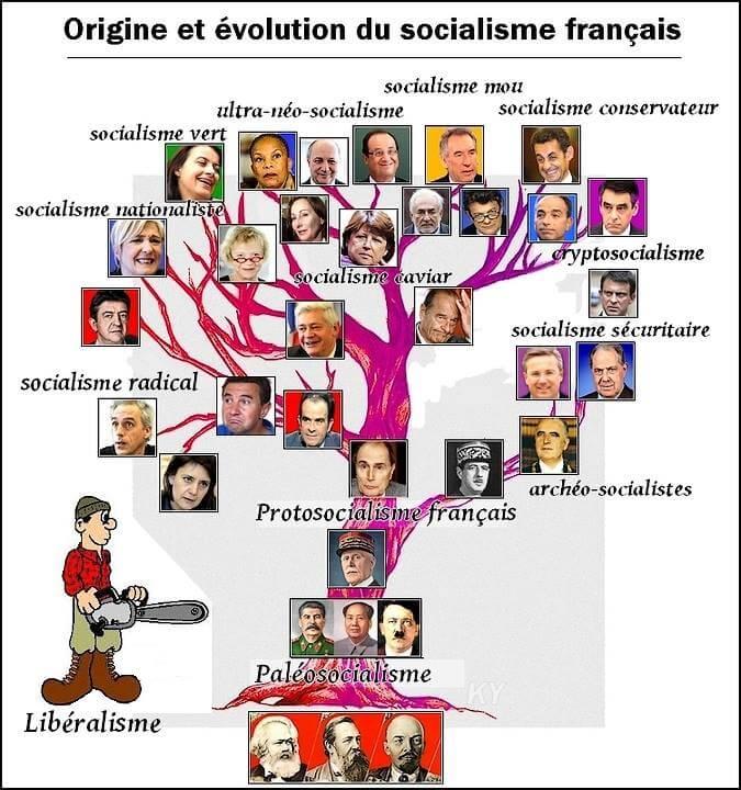 Origine et évolution du socialisme français