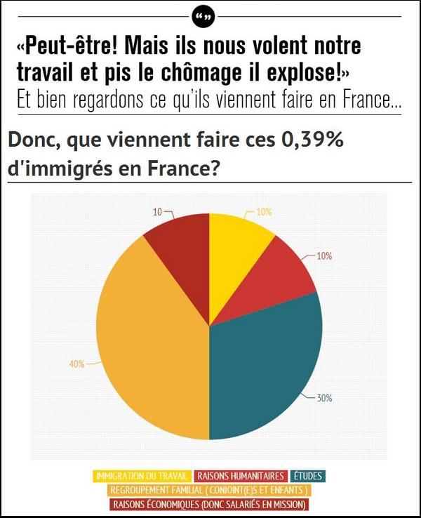 Que viennent faire les immigrés en France ?