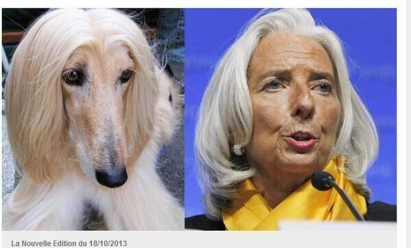 Christine Lagarde comparée à un chien : l'image raciste du jour