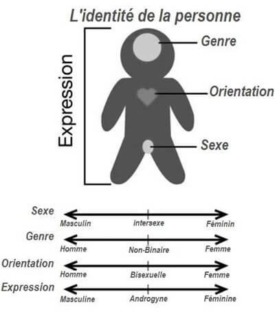 Genre, Orientation, Sexe